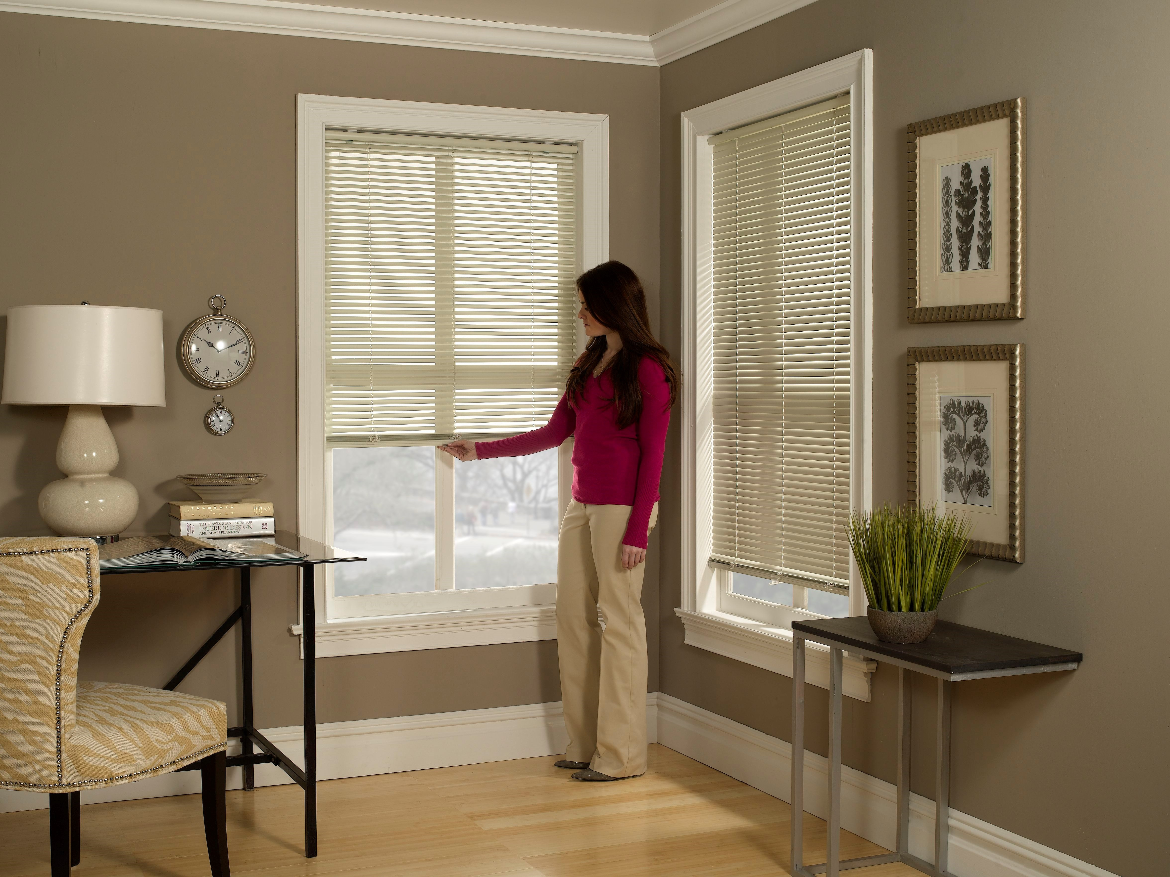 "Blinds.ca: 1"" Cordless Mini Blind"