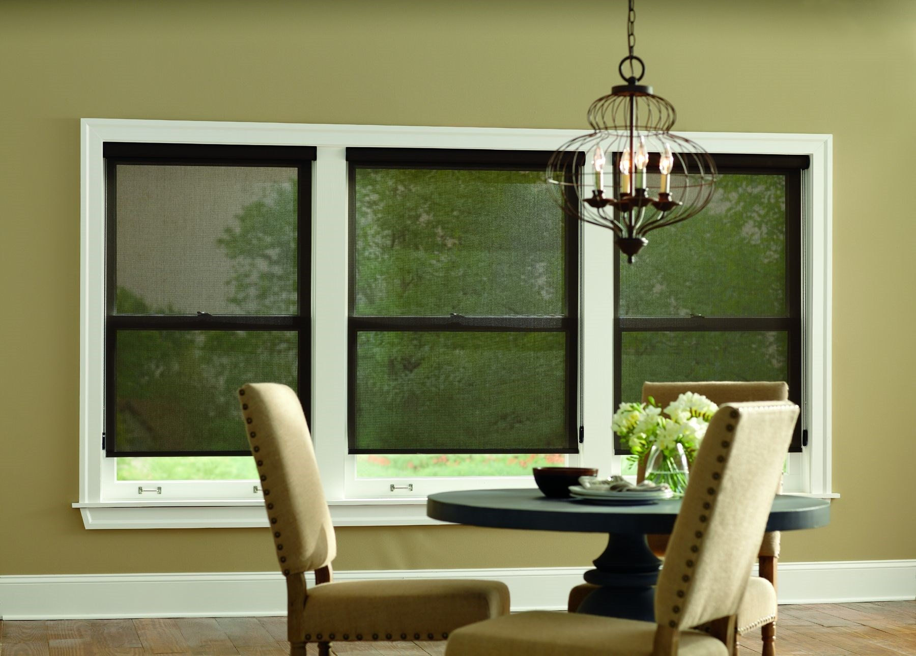 Blinds.ca: Solar Roller Shade
