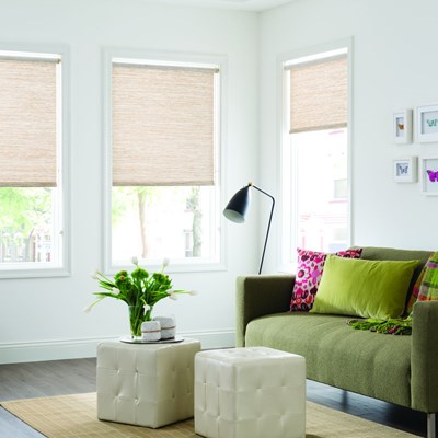 Essentials Roller Shade Blinds Ca