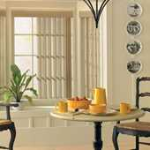LEVOLOR Vertical Blinds