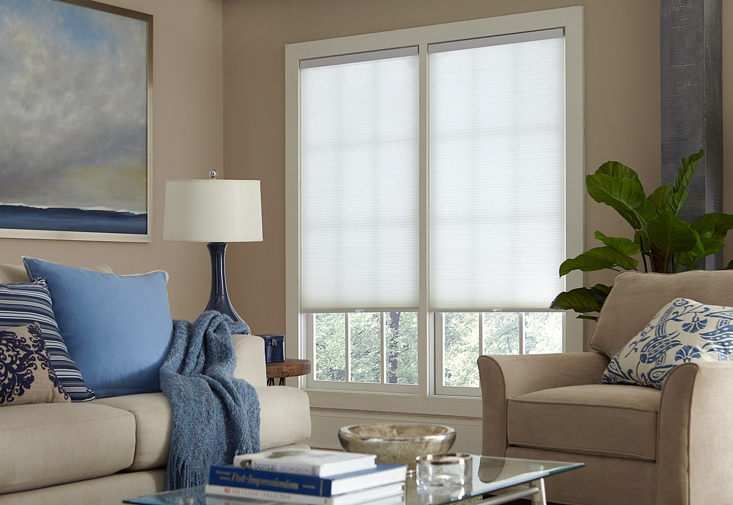 Budget Cordless Light Filtering Cellular Shade