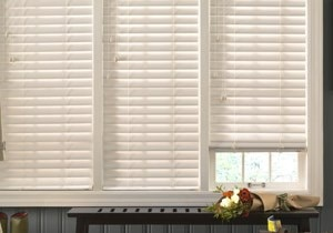 "Blinds.ca:  2-1/2"" Faux Wood Blind"